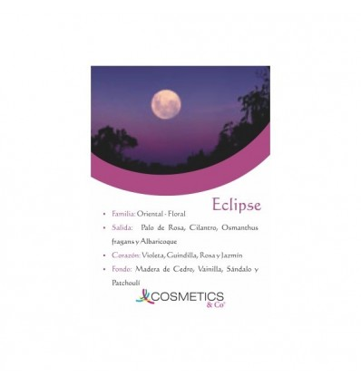 ECLIPSE EDT 100ML MUJER