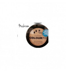 TECHNIC COLOUR FIX POLVO COMPACTO WATERPROOF MUSHROOM