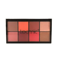 Technic Palette Blush and Highlighter