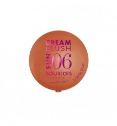BOURJOIS CREAM BLUSH SUN 06 TROPICAL CORAL COLORETE EN CREMA 2,5G
